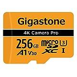 Gigastone Carte Mémoire Micro SD XC 256 Go, U3 A1 V30 + Adaptateur SD. Vitesse de Lecture allant jusqu'à 100 Mo/s. Compatible avec Nintendo Dashcam GoPro Caméra Samsung Canon Nikon DJI Drone.