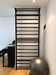 ARTIMEX espaldera de Acero (Escalera Sueca) para Gimnasia - utilizadas en hogares, gimnasios o al Aire Libre, 230x90 cm, código 221-Metall