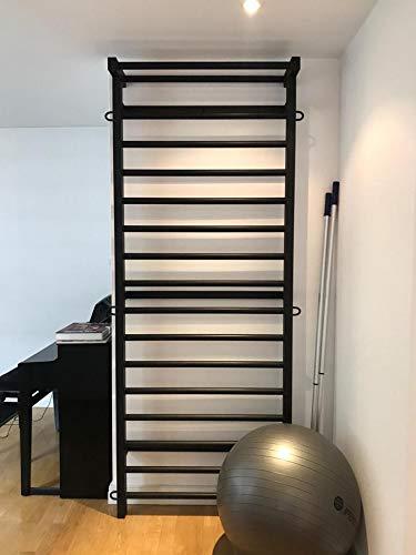 ARTIMEX Sprossenwand aus Metall (schwedische Leiter) für Gymnastik - Wird in Heimen, Sporthallen oder Fitnesscentern verwendet, 230x90 cm, Code 221-Metall