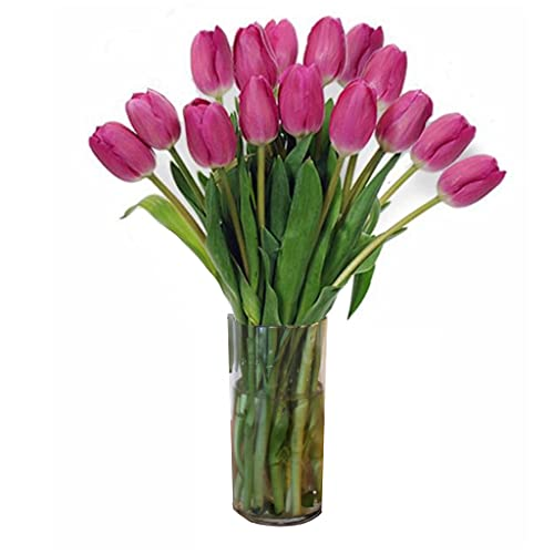 Stargazer Barn Pretty in Pink Tulips-Farm Direct Pink Tulips with Vase, 15 Count
