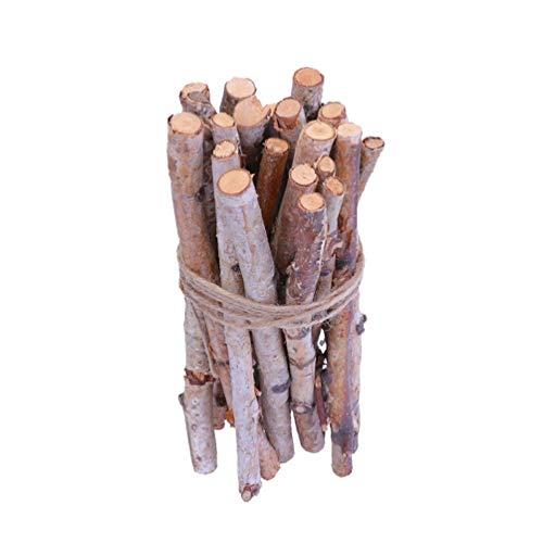 VOSAREA 20 Stücke Birkenzweige Dekozweige Birkenäste Holzstäbe Bastelstäbe Holzstäbchen Birken Deko Äste Naturmaterialien zum Basteln für Vase Teelichthalter DIY Handwerk