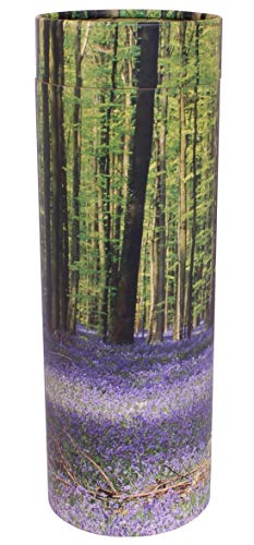Urne funéraire écologique biodégradable (Bluebell Medium)