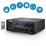 Moukey Amplificateur Stéréo Double Canal avec Entrées USB, SD Carte, FM Radio, AUX IN