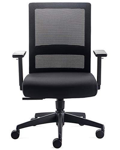 CHAIRLIN Ergonomic Adjustable Executive Chair, Big 320LB High Back Office Chair, Mesh Home Computer Desk Chair with 3D Armrest, Lumbar Support and Thick Seat Cushion (Black)