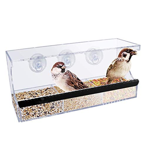 SunGrow Acrylic Glass Bird Feeder Set, Spill-Proof, Crystal Clear - Easy to Install with 3 Hooks, Economical, Perch Provides Enjoyable Eating time to Finch, Parakeet, Sparrows, Cage Sizes