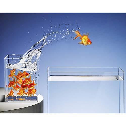 5D DIY Kit Pintura Diamantes Pecera Goldfish Cuadros Completo Cristal Diamond Painting...
