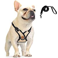 Dog Harness and Lead Set: This dog harness come with a lead, the lead is removable and you can put on the lead when you walk the dog. When you want the dog to walk by himself, you can remove the dog lead. Comfortable Vest Harness: This vest harness i...