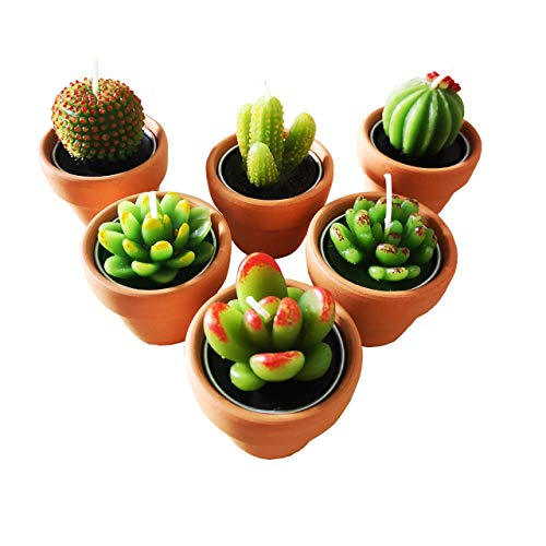 Cactus Tealight Candles with Tiny Terracotta Pots Holder, Succulent Baby Shower Favors Decorations, Delicate Decorative Candles Valentine's Day Birthday House-Warming Party Spa Home Decorates (6)…