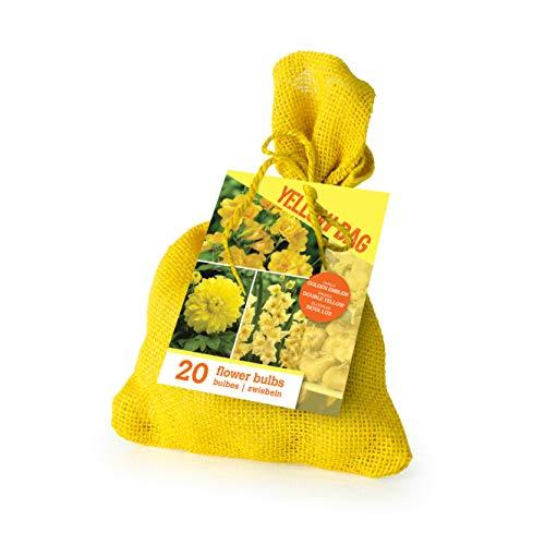 20x Blumenzwiebel Mix'The Yellow Bag'  ...