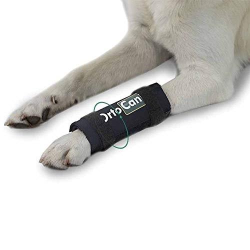 Ortocanis Original Karpaltbandage für Hunde mit Karpal-Hyperextension, Arthritis, vordere Beinverletzungen, seitliche Metallschienen für mehr Unterstützung - für alle Rassen, Größen - L
