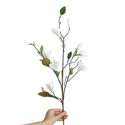 Coloré(TM) Feuille artificielle Flower Artificielle Faux Fleurs Feuille Magnolia Floral Bouquet De Mariage Party Home Decor (Blanc)