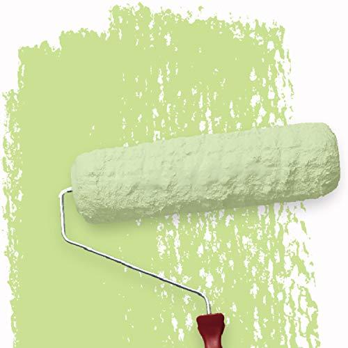 WALLCOVER Donegal 3B - Pintura de pared para habitación infantil (2,5 L), color verde claro