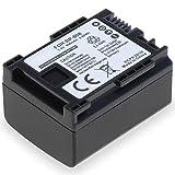 subtel® Batería de Repuesto BP-807 BP-808 BP-809 BP-819 BP-827 per Canon FS100 FS200 Legria FS406 FS306 FS200 FS20 FS21 FS46 FS10 FS11 Vixia XA10, 890mAh BP-808, Accu Sustitución Camara, Battery