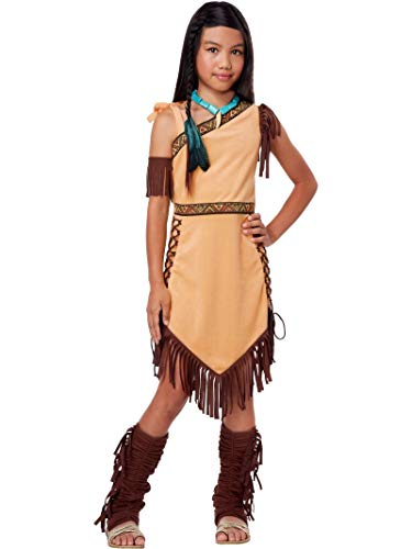 California Costumes Native American Princess Child Costume, Brown, Medium