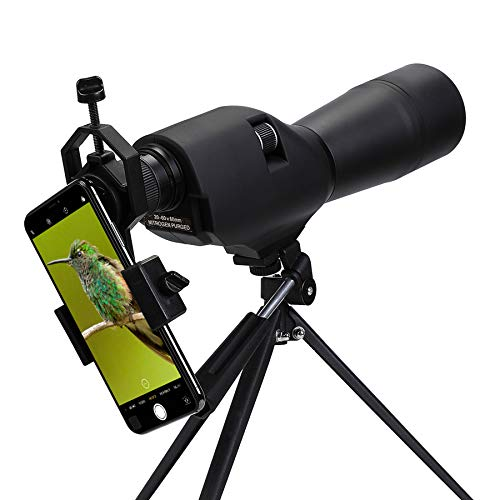 Pinty 20-60x60 Waterproof Straight Spotting Scope with Tripod, Optics Zoom 36-19m/1000m for Target...