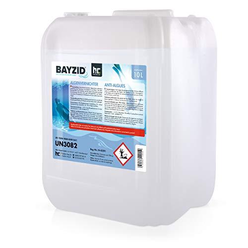 Höfer Chemie 2x10 L Pool Algenvernichter - Präventives Anti Algenmittel für Schwimmbad & Pool - gegen Algen