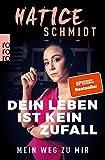 Dein Leben ist kein Zufall: Mein Weg zu mir - Hatice Schmidt
