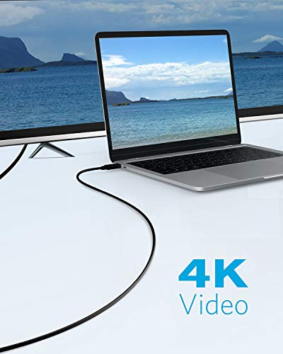 Anker USB-C to HDMI Cable (6ft), 4K 60Hz Video Plug and Play Adapter for Type C MacBook Pro/Air/iPad Pro (2018), Dell XPS, Surface Book 2, Samsung S10/S9/S8/Note 8, and More