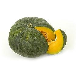 Fresh Pumpkin Disco - 1 Piece Pack