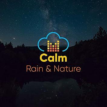 Calm Rain & Nature, Vol. 9