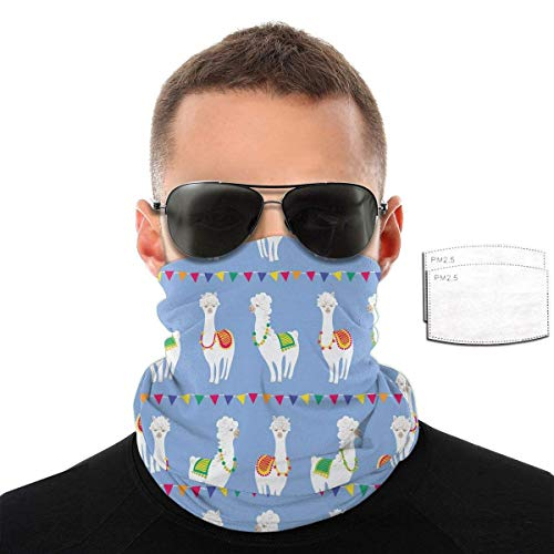 Gcaibai Llama Colorful Creative Kawaii Multifunctional Cloth Scarf Headwear Balaclava Face Masks Bandana Neck Gaiter with 2 Filters