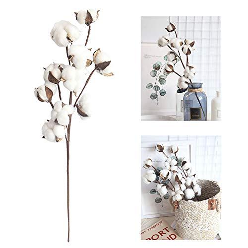 fiori artificiali secchi cotone, fiori essiccati naturalmente cotone, Fiore finto simulazione fiori artificiali per decorazioni, matrimoni, feste, uffici, ristoranti DIY decorativo 1pcs