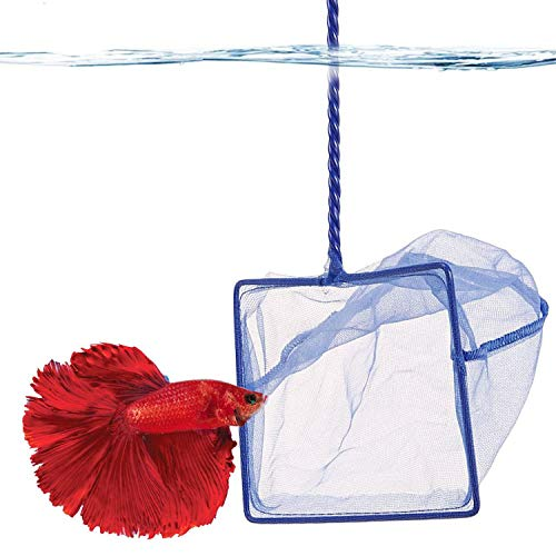 SunGrow Betta Net, 5x4 Inches with 11 Inches Handle, Extra Soft Nylon Net, Easy Routine Tank Maintenance, Random Color