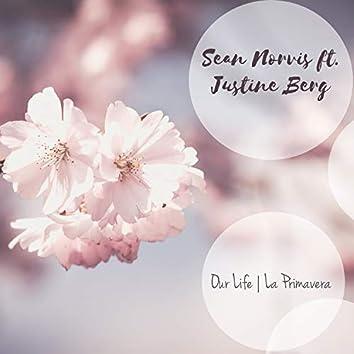 Our Life | La Primavera