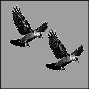 Two Birds One Stone (Remix)