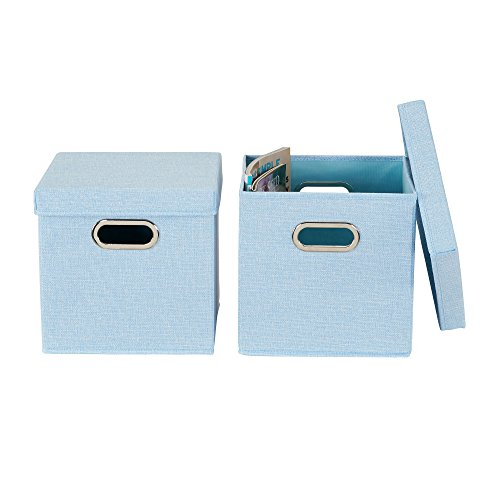 Household Essentials 816-1 Café Cube Bin Storage Set with Lids and Handles | 2 Pack, Baby Blue Linen