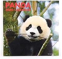 壁掛(大) グリーティングライフ 2020年 パンダ カレンダー 壁掛 LPサイズ C-1133-PA