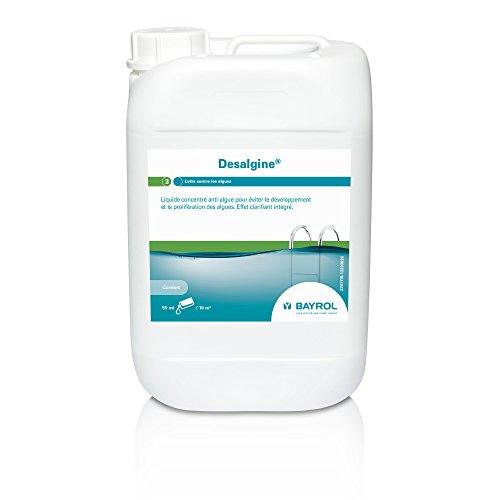 Bayrol - Entretien Piscine - Desalgine bidon 6L - Anti-algues Piscine Eau Claire
