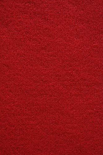 Rasenteppich Kunstrasen Basic+ rot Weich Meterware mit Drainage-Noppen, wasserdurchlässig (200x150 cm)