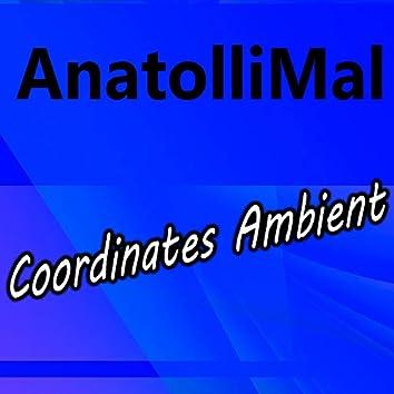 Coordinates Ambient