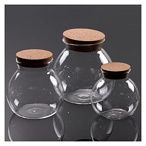 Allenzhang Xunsfy decoración botella de vidrio + tapa flores artificiales jarrón de cristal navidad corcho de navidad botella de cristal viales para casas de boda de vacaciones ( Color : 12cm Height )