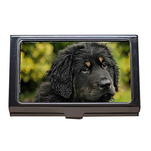 Titular de la tarjeta de presentación, Akbash Dog Herd Protection Dog Young Animal Puppy, Estuche para tarjetas de visita de acero inoxidable