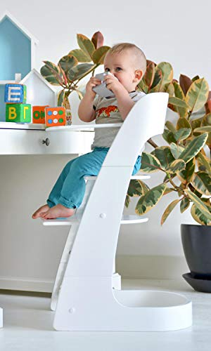 ComfortBaby SmartChair 2-in-1 wit