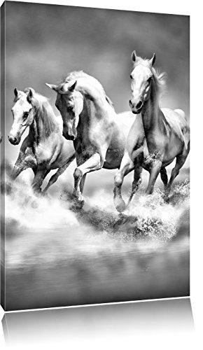 Pixxprint Pferde rennen im Wasser als Leinwandbild   Größe: 100x70   Wandbild  Kunstdruck   fertig bespannt