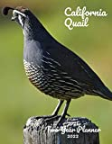 California Quail 2021-2022 Two Year Planner: Colorful Bird 24 Months Calendar Two Year Monthly Agenda Organizer Yearly Planner 2021-2022 2 Year ... Parrot eagle duck Avian Zoo Nature owl birds