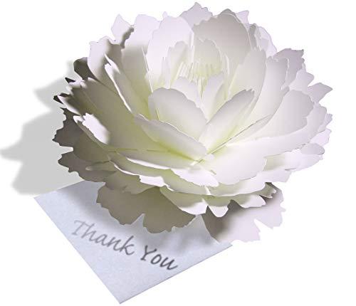 〈ピオニー〉咲くようにひらく 花のサンキューカード forバースデー(誕生日)・ウェディング・アニバーサリー・母の日・クリスマスカード・グリーティングカード
