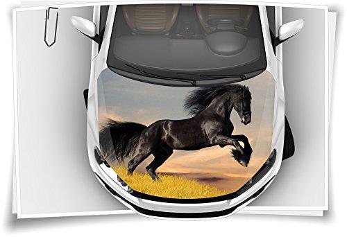 Medianlux Hengst Ross Pferd Black Motorhaube Auto-Aufkleber Steinschlag-Schutz-Folie Airbrush Tuning Car-Wrapping Luftkanalfolie Digitaldruck Folierung