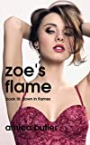 Zoe's Flame: Book III: Down In Flames (English Edition)...