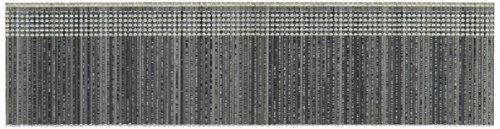Porter-Cable PBN18125-1 Lot de 1000 clous parisiens Calibre 18