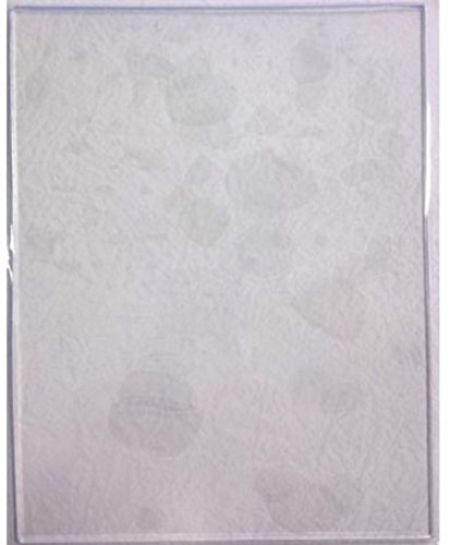 John Lockwood Gel Plate - Large Rectangle Gel Plate 15.2 x 20 cm