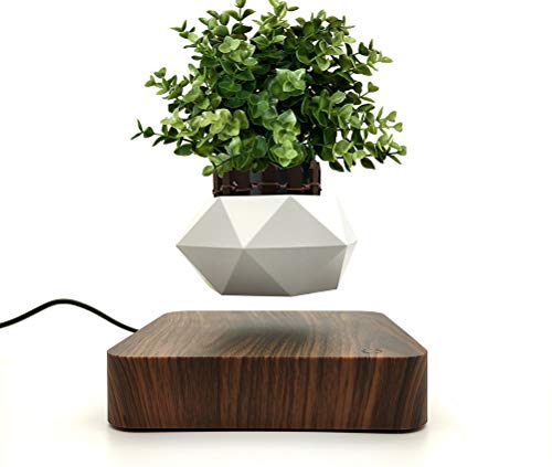 Jasis Woo Creative Levitating Air Bonsai Pot Rotation Planters Magnetic Levitation Suspension Flower Floating Pot Potted Plant Desk Decor Flower Pots & Planters (Dark Brown)