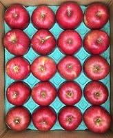 青森県産 りんご 調理用 紅玉 キズ 中玉20個入 5K箱
