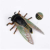 Eden Toys 昆虫 動物 フィギュア 模型 リアル 誕生日 プレゼント 贈り物 PVC おもちゃ 家 インテリア 置物 オプジェイ 塗装済 完成品 (アブラゼミ)