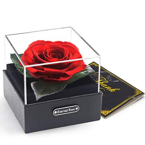 An Rosen Box, Infinity Rose,echte Rose rot, 3 Jahre haltbar, Rosenbox als Geschenk mit Geschenkbox zum Muttertag oder Jahrestag
