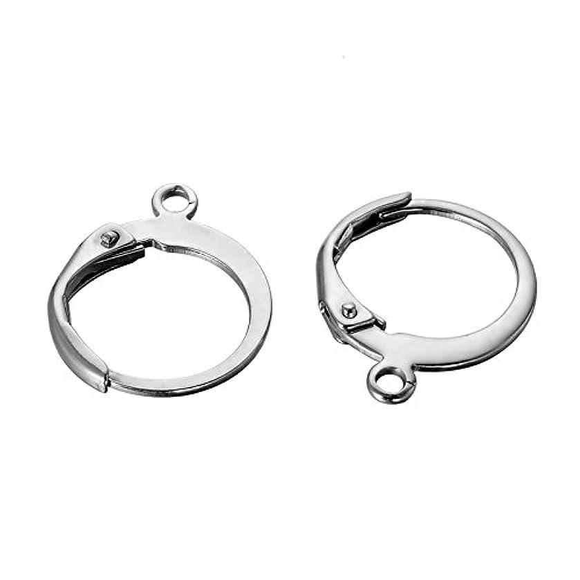 HooAMI 10pcs Stainless Steel Lever Back Earrings Earwire Findings 14.5mmx12mm
