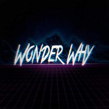 Wonder Why (Remix)